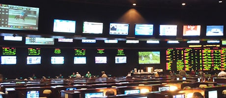 Betting at STN Sportsbook