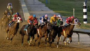 Horse Betting Options